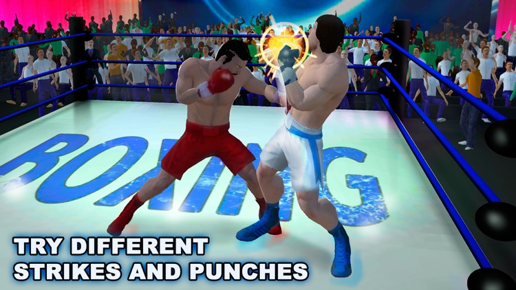 Real Punch Box Fighting 3D