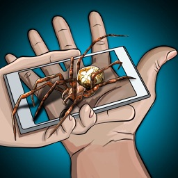 Spider Hand Fear Joke