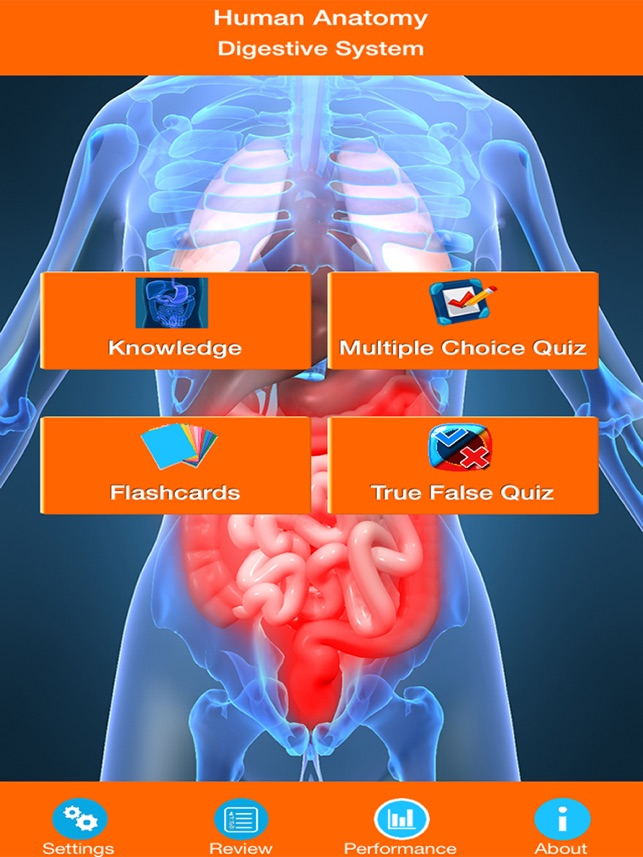 Human Anatomy : Digestive System on the App Store