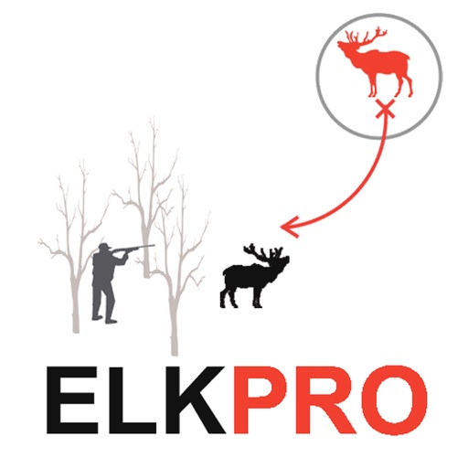 Elk Hunting Strategy for Big Game Hunting