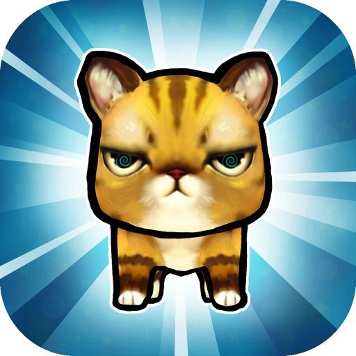 Trippy Kitty - Psychedelic Cat Game by Vladimir Angelov