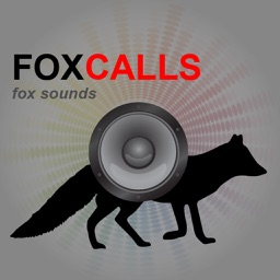 REAL Fox Calls & Fox Sounds for Fox Hunting -- BLUETOOTH COMPATIBLE