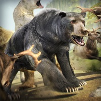 Codes for Bear Simulator 2016 . Wild Bears Simulation Games For Kids Free Hack