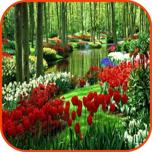 Garden Wallpapers Garden Frames Garden Games by Janice Ong