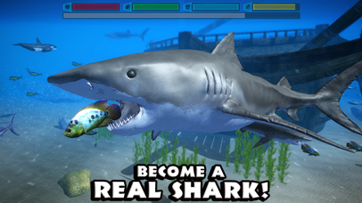 Ultimate Shark Simulator-0