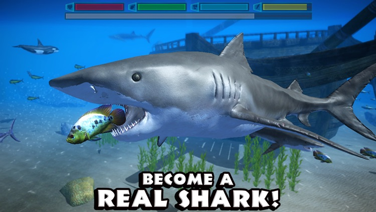 Ultimate Shark Simulator screenshot-0
