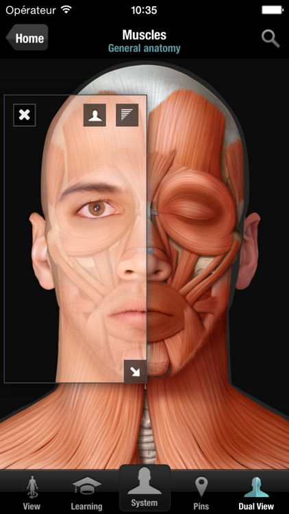 Virtual Human Body screenshot-1
