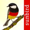 Vögel Deutschlands - ein Naturführer zum Bestimmen der heimischen Vogelarten in Garten, Wald und Wasser