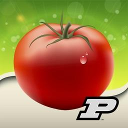 Purdue Tomato Doctor