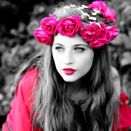 Color Effects Photo Maker with Artistic Converting to Lively & Vibrant Details on Pic.s