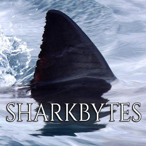 Shark Bytes NoAds