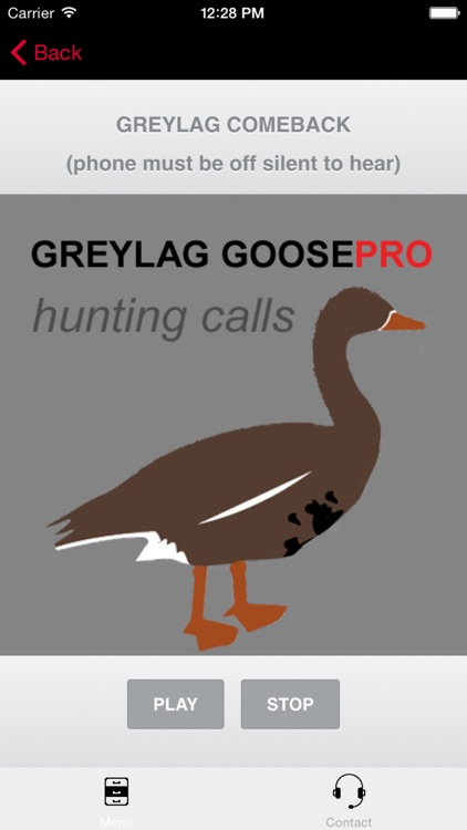 REAL Greylag Goose Hunting Calls - Greylag Goose CALLS & Greylag Goose Sounds!