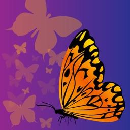 Papillon Viewer