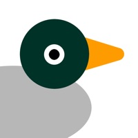 Codes for Hungry Ducks Hack