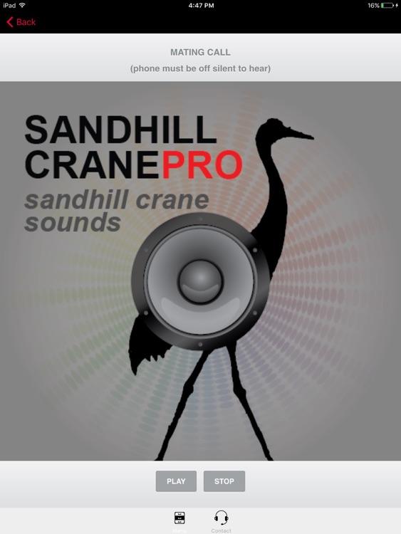 SandHill Crane Calls- SandHill Crane Hunting Call HD