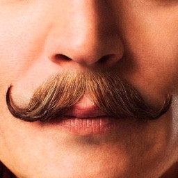 Mustache Booth : Grow & Morph a Hilarious Beard on Your Face
