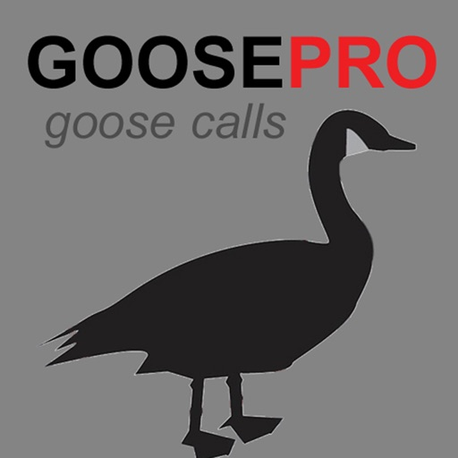 Canada Goose Calls & Goose Sounds for Hunting BLUETOOTH COMPATIBLE