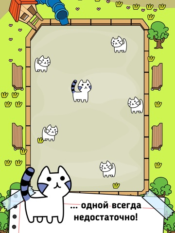 Cat Evolution   игра мутантных кошек для iPad