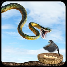 Activities of Real Flying Snake Attack Simulator: Hunt Wild-Life Animals in Forest