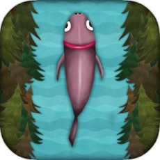 Activities of Return of the Salmon
