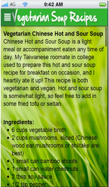 Vegetarian Soup Recipes+: Healthy Soup Recipes screenshot-4