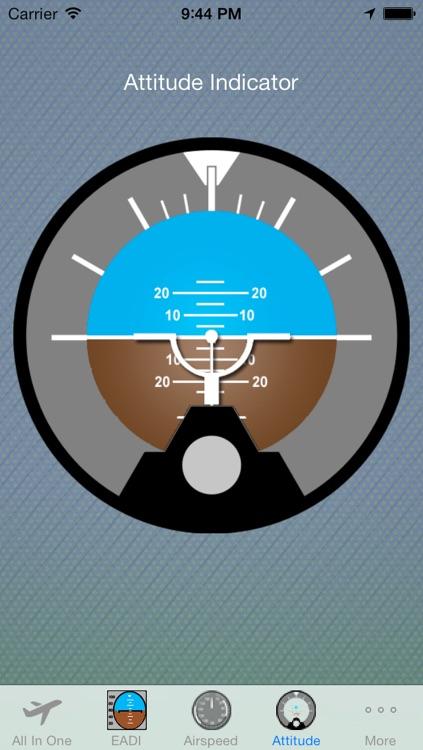 Virtual Instrumental Flight