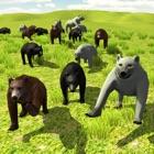 Bear Invasion icon