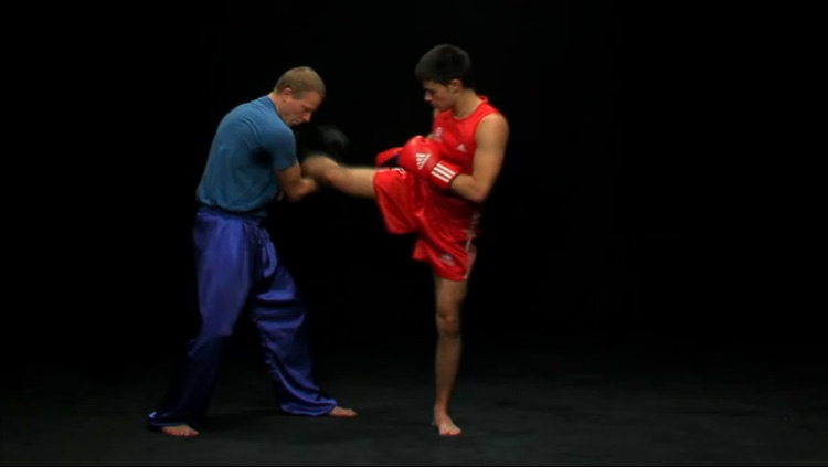 Sanda - Chinese Boxing