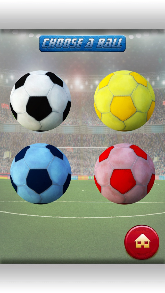3D Soccer Field Foot-Ball Kick Score - Fun-nest Girl and Boy Game for Free-1