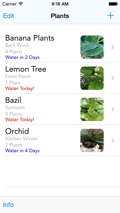 Water Your Plants!