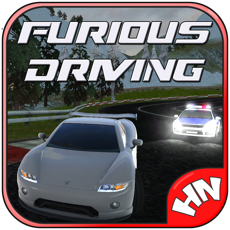 Activities of Furious Driving