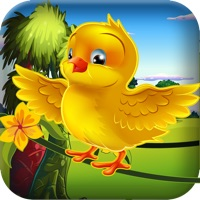 Codes for Exotic Bird Flying Sky Plane Hero - Smart Birdy Fly Driving Mania Free Hack