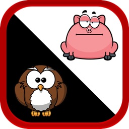 Don't Touch The Angry Pigs - Cool Fat Bird Rescue Game Free