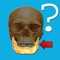 """Anatomy Quiz"" is a quiz which invites you to test your knowledge of human anatomy"