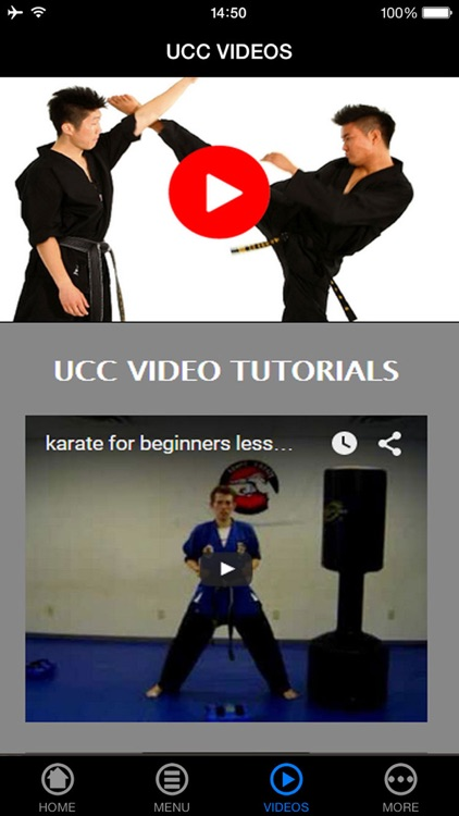 Learn Karate - Beginner's Guide screenshot-3