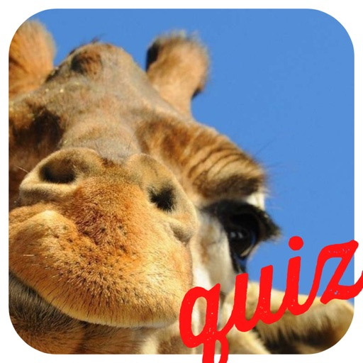 A Guess the Close Up Pics Trivia Quiz - Ultimate Word Heroes Random Puzzle Game - Free App iOS App