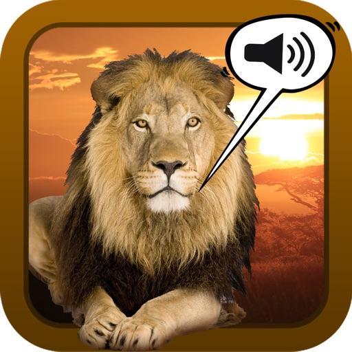 Sound Game Wildlife Photo icon