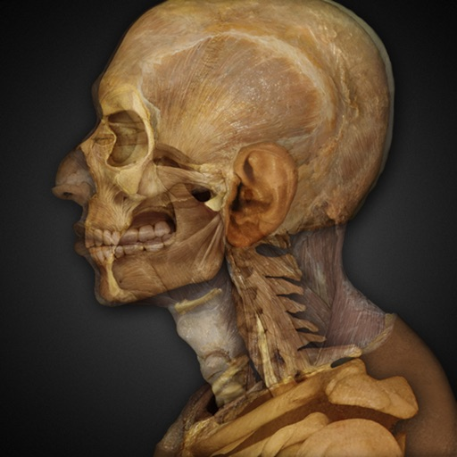 Dissect A Virtual Cadaver With Anatomy & Physiology REVEALED