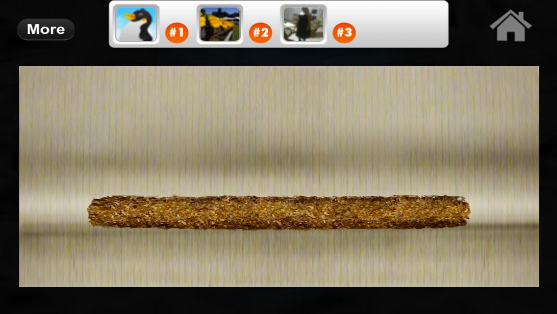 iRoll Up Friends: Multiplayer Rolling and Smoking Simulator Game Screenshot