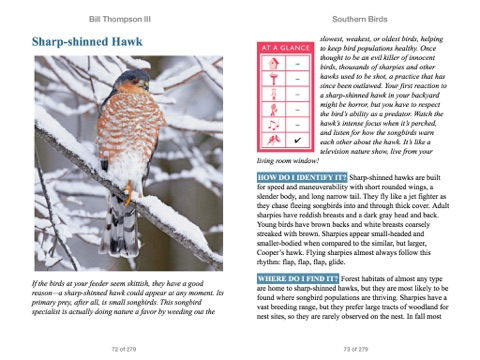 Southern Birds By Bill Thompson On Apple Books