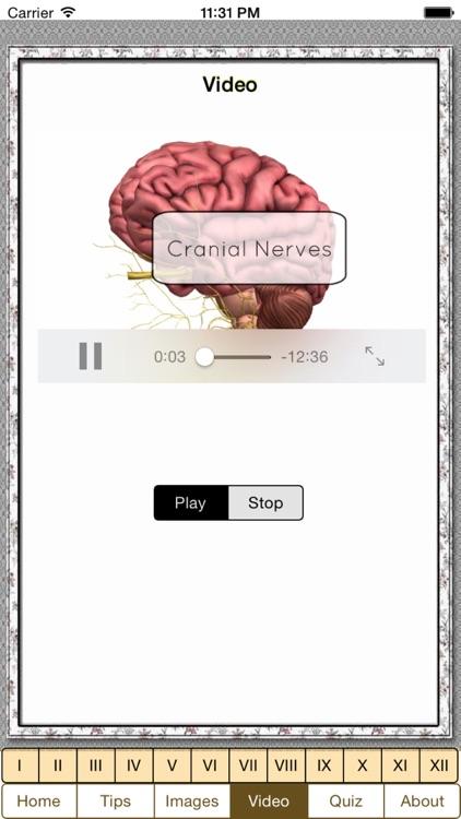 Cranial Nerves Plus screenshot-3