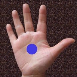 Hand Massage Map