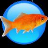 Goldfish 3 Standard Edition