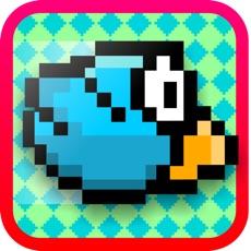 Activities of Bird Bit Match