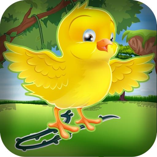 Bird Egg Drop Dash Puzzle - Line Bouncing Birdie Rush Crash Quest Pro