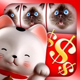 Lucky Cat Slots: Top Slot Machine Game with Real Kitty Cats' Sounds—FREE