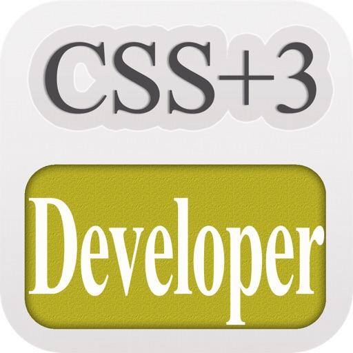 CSS Developer
