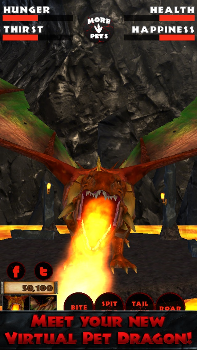 Virtual Pet Dragon Screenshot 1