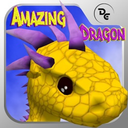 Amazing Dragon