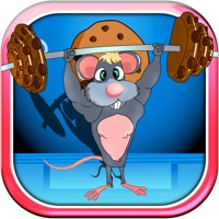 Codes for Mouse Body Building Chocolate Cookie Lift Free Hack